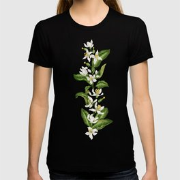 Citrus OrangeTree Branches with Flowers and Fruits T-shirt