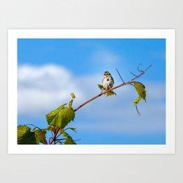 Swinging on a Vine Art Print