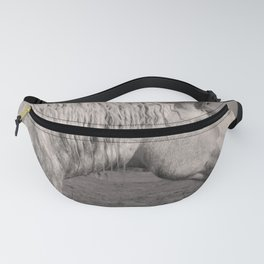 White Horse Fanny Pack