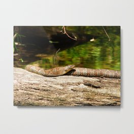 death serpent Metal Print