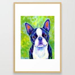 Colorful Boston Terrier Dog Framed Art Print
