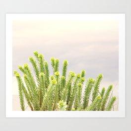 dunes plants Art Print