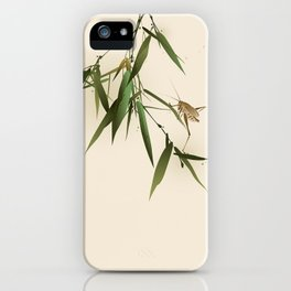 A grasshopper on bamboo leaves iPhone Case