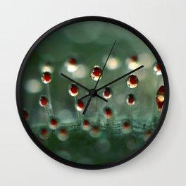 Sundew Sparkle Wall Clock