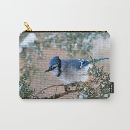 Hunkered Down (American Blue Jay) Carry-All Pouch