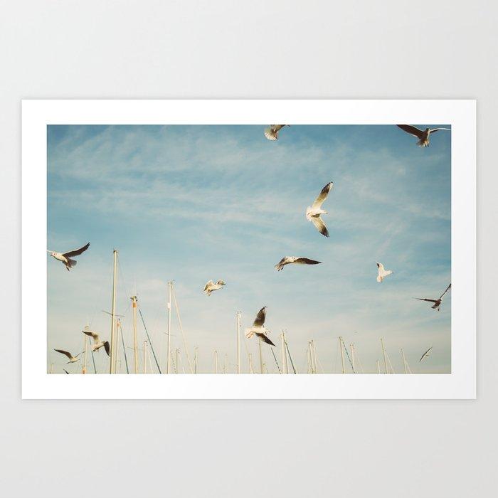 Seagulls Flying In The Sky Art Print
