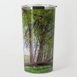 Cottonwoods at Lee's Farm 2 Travel Mug