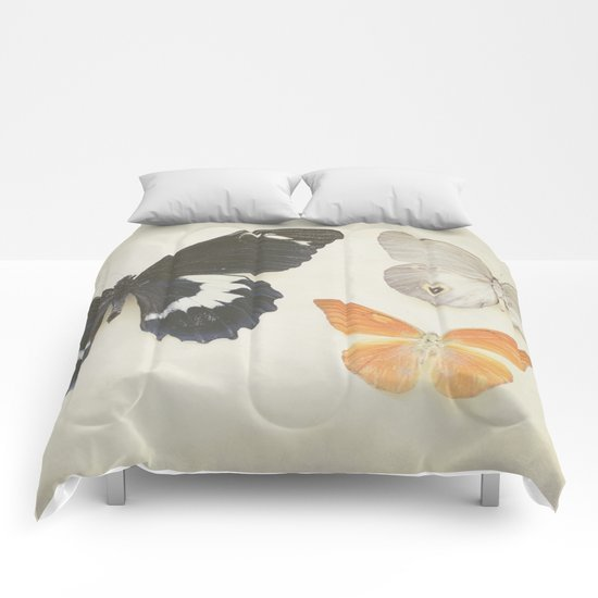 Brown Butterflies  Comforters