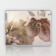 lenten rose Laptop & iPad Skin