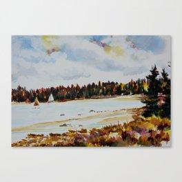 Michigan 1 Canvas Print