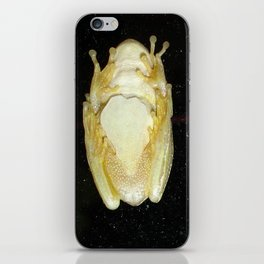 Underbelly The Soft Underside or Abdomen Of A Tree Frog iPhone Skin
