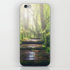 Green Jungle Forest Path iPhone & iPod Skin