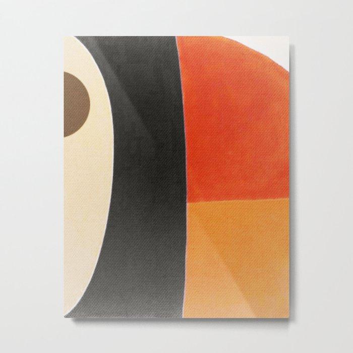 Toucan Macro Metal Print