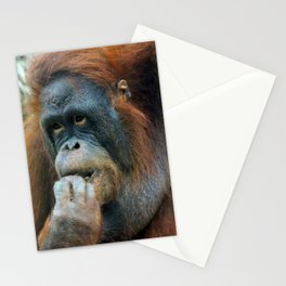 Orangutan Mom Stationery Cards