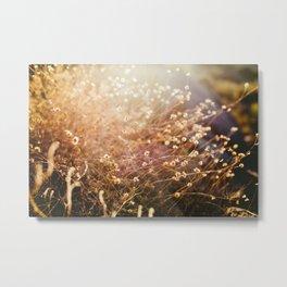 Desert Brush Metal Print