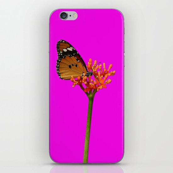 African Monarch in Pink iPhone & iPod Skin
