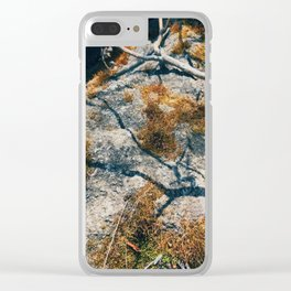 Shadows in the Light Clear iPhone Case