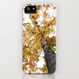 Fall Colors  //  Look Up iPhone Case