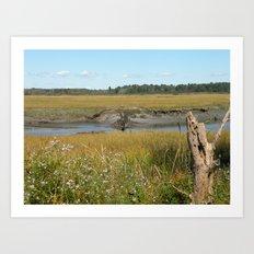 Scarborough Marsh Art Print