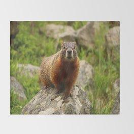 On The Rocks Marmot Throw Blanket