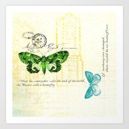 butterfly pillow Art Print