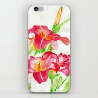 hot pink iPhone & iPod Skins featuring Hot Pink by Kate Havekost Fine Art