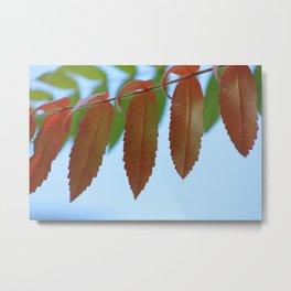 Parallel Leaves Metal Print