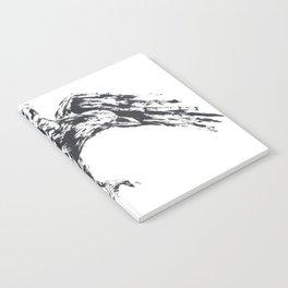 Edgar Allen Croe Notebook