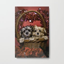 Mixed Breed Puppies Together in a Basket Looking up in Front of a Glitter Heart Metal Print