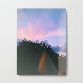 Paradise. Metal Print