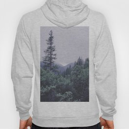 Hang Low, Stand Tall Hoody