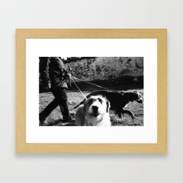 WALKIES  Framed Art Print