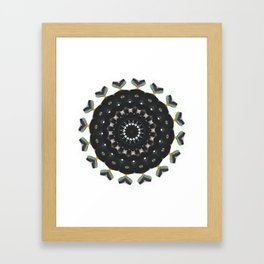 Radiate 003 Framed Art Print