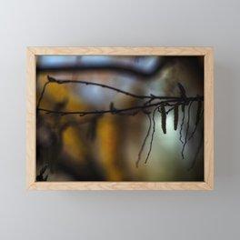 Concept nature : Buds in the light Framed Mini Art Print