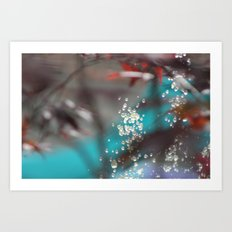 An Outdoor Aquarium Art Print