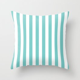 Vertical Aqua Stripes Throw Pillow
