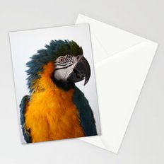 Blue-and-yellow macaw Stationery Cards