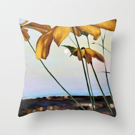 A View From the Rooftop at Dusk in August Throw Pillow