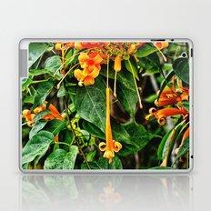 Spectacular orange trumpet flower Laptop & iPad Skin