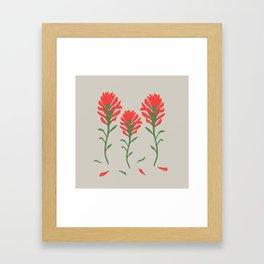 Floral-Indian Paintbrush-Gray Framed Art Print