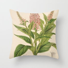 Flower buddleia curviflora9 Throw Pillow