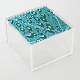 Leaf drops and light Acrylic Box