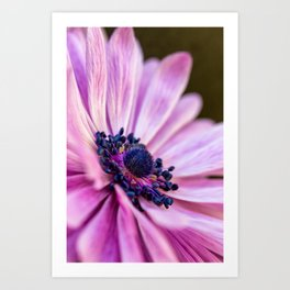 Profile in Pink Art Print