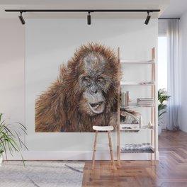 Sumatran Orangutan Wall Mural