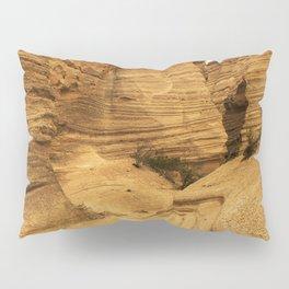 Kasha 2 Pillow Sham