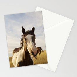 Western Paint Horse Stationery Cards