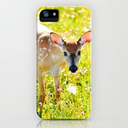 Great Meadows Fawn- Shenandoah National Park iPhone Case