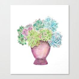 succulent in a pot watercolor Canvas Print