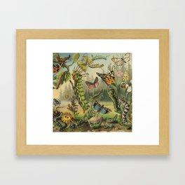 Cute Caterpillar Framed Art Print