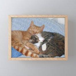 Sleeping Sweeties Framed Mini Art Print